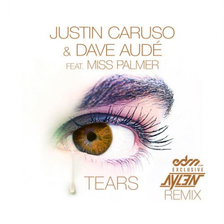 Justin Caruso & Dave Aude feat. Miss Palmer - Tears (Aylen Remix)