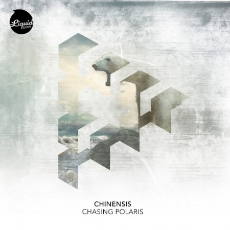 Chinensis - Shadow Of The Falling Sun (Original Mix)
