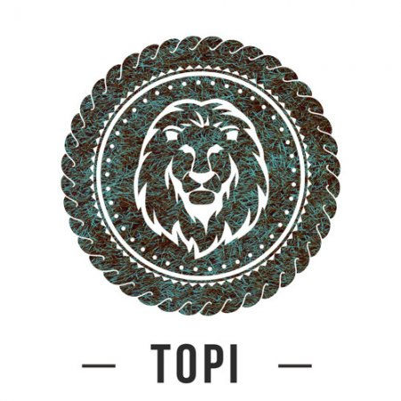 Topi - Step It (Original Mix)