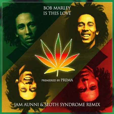 Bob Marley - Is This Love (Jam Aunni & Sloth Syndrome Remix)