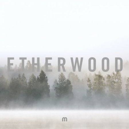 Etherwood - Youre Missing Life (Original Mix)